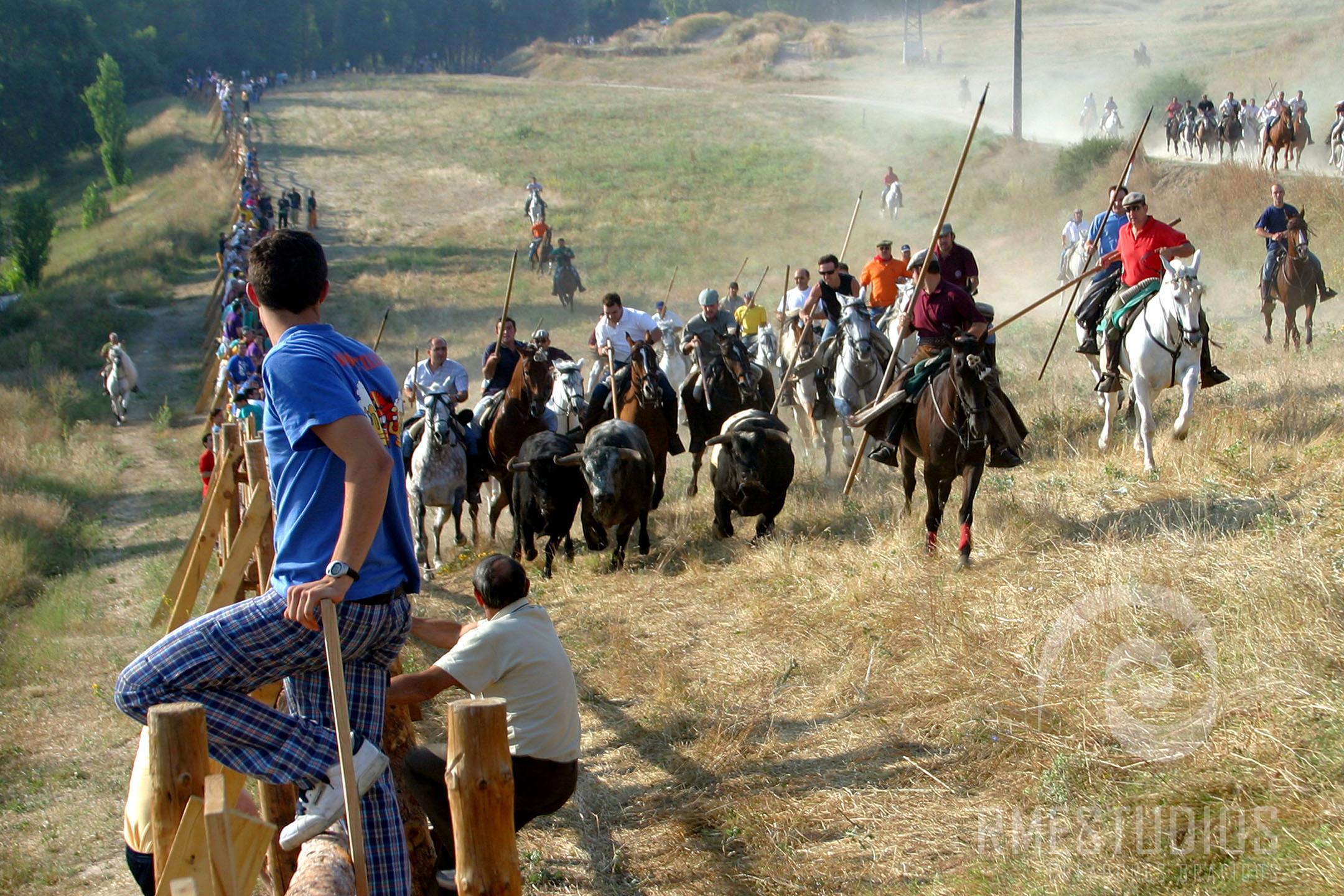 Encierros a caballo en Arevalo