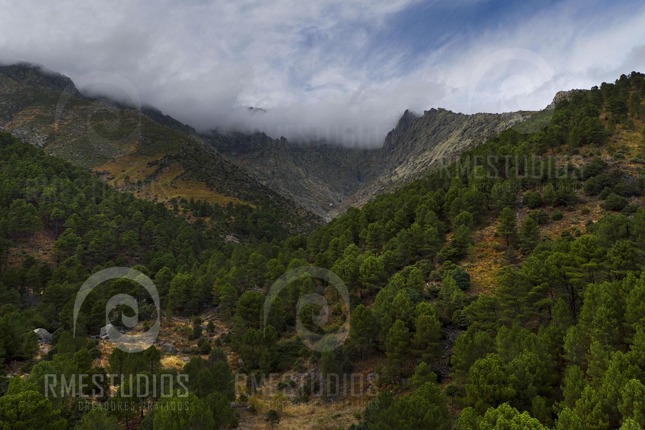 Sierra de Gredos, Nogal del Barranco (Guisando)